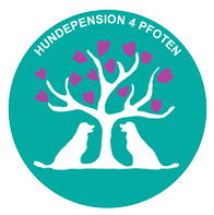 Hundepension 4 Pfoten • Impressum